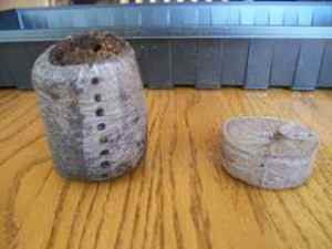 Compressed pellet on the right, expanded on the left