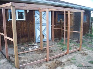 build a chicken run gardenerscott